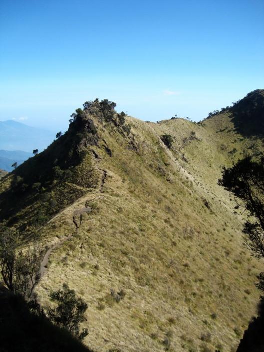 Jalur Pendakian menuju Puncak Merbabu