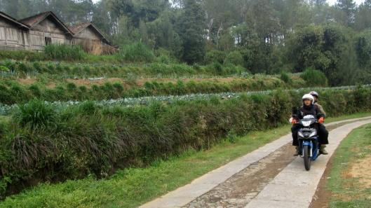 Jalan desa Wekas menuju Base Camp