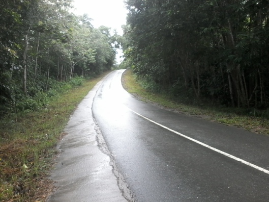 Jalan aspal mulus setelah diguyur hujan