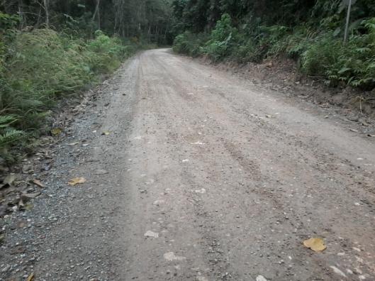 Jalan tanah dan berbatu
