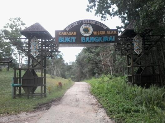 Gapura kedua, 500 meter lagi masuk Wisata Alam Bukit Bangkirai
