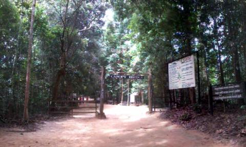 Pintu masuk Canopy Bridge