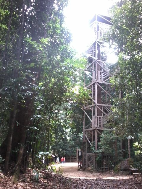 Struktur tangga Canopy Bridge dengan ketinggian 30 meter