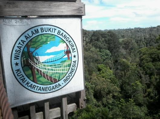 Wisata Alam Bukit Bangkirai