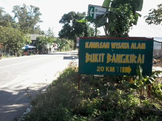 Masih masuk 20 km lagi ke wisata alam bukit Bangkirai